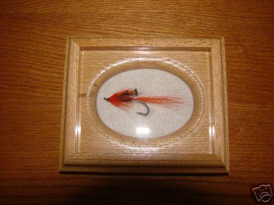 Ally's Shrimp - AllyGowen