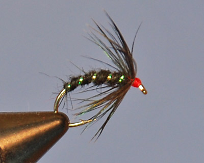 Black Gnat Soft Hackle Fly