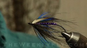 Dave Tucker\'s Black Eye Spey