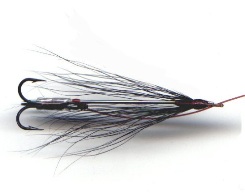 John Gray Needle Fly