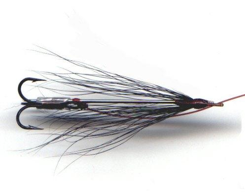 John Gray Needle Fly