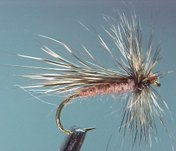The Chuck Caddis